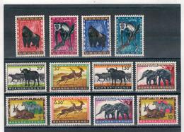 1959 - Animaux Protégés - Faune Du Ruanda. - 1948-61: Nuovi