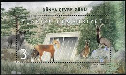 2020 Turkey World Environment Day: Wild Boar, Red Fox, Brown Hare, Wild Mountain Goat Souvenir Sheet (** / MNH / UMM) - Sin Clasificación
