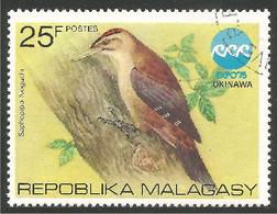 OI-147 Madagascar Oiseau Bird Uccello Vogel - Zonder Classificatie