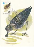 USSR Maximum Card 5183,birds - Zonder Classificatie