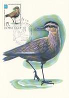 USSR Maximum Card 5185,birds - Zonder Classificatie