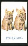AK Prosit Neujahr, Zwei Glücksschweine Im Portrait - Pigs