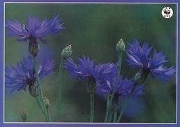 Flowers - Fleurs - Bloemen - Blumen - Fiori - Flores - Ruiskaunokki - Cornflower - WWF Panda Logo - Flowers