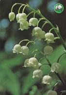 Flowers - Fleurs - Bloemen - Blumen - Fiori - Flores - Lily Of The Valley - Kielo - WWF Panda Logo - Flowers