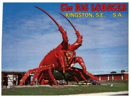 (NN 9) Australia - SA - Kingston Big Lobster (Statue De Homard Géant) - Fish & Shellfish