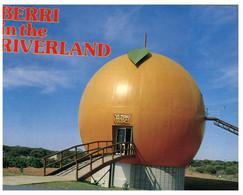 (NN 9) Australia - SA - Berry Big Orange (Fruit Géant) - Other