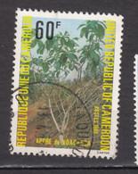 ##13, Cameroun, Cameroon, Arbre, Tree - Cameroon (1960-...)
