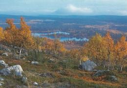 Autumn Landscape - Sammalvaara - Enontekiö - WWF Panda Logo - Flowers