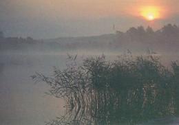 Summer Lake Landscape - Paysage De Lac D'été - WWF Panda Logo - Sunset - Other