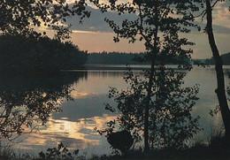 Summer Lake Landscape - Paysage De Lac D'été - WWF Panda Logo - Atmosphere - Sunset Or Sunrise - Other