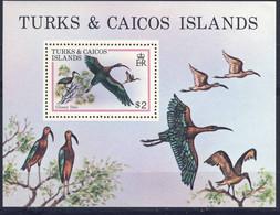 TURKS ET CAICOS 1980 OISEAUX  YVERT N° B21 NEUF MNH** - Zonder Classificatie