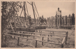 CPA - BELGIQUE - DADIZELE - Daiselpark - Unclassified