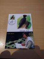 A. Buzin 3939 Zwarte Specht  RRR - 1985-.. Pájaros (Buzin)
