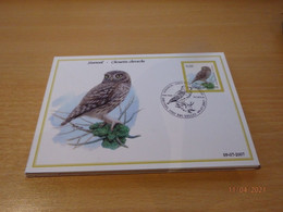 A. Buzin 3672 Steenuil  RRR - 1985-.. Vogels (Buzin)
