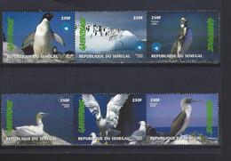 SENEGAL THEME OISEAUX MOUETTE  PINGOUIN MANCHOT - Zonder Classificatie