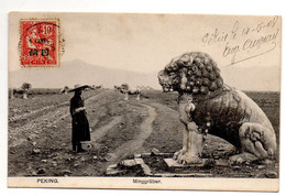 Allèe Tombeaux Ming  Près De  Pekin En 1908 - Cina