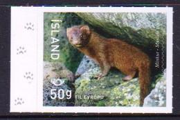 Iceland 2020 Fauna Mink 1v MNH - Other