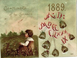 1 Calendrier 1889 Compliments Of The Saison The Fidelity & CasualtyC° Brodway New York Insurance - Small : 1901-20
