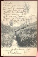 Cpa Tienen 1907 - Tienen