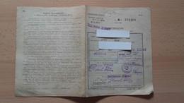 Jugoslovanske Zeleznice.Zelezarna Jesenice.Legitimacija.Ljubljana-Zirovnica - Other