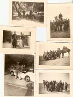 Lot De 16 Photographies D'Algérie, Gendarmes Mobiles ?, Protection, Désert, Réfectoire, Chameaux, Clichés Années 1960 - Guerra, Militari