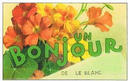 36   UN  BONJOUR    DE LE  BLANC   CPM  TBE  VR638 - Le Blanc