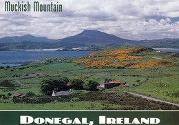 1 AK Irland / Ireland * Muckish Mountain - County Donegal * - Donegal