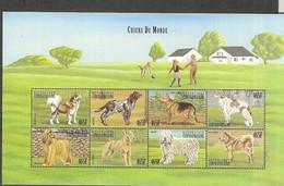 CENTRO AFRICANA Nº 1618AC AL 1618AK - Honden