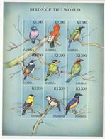 MDB-BK6-482-3 MINT ¤ ZAMBIA 2000 9w In Serie 1200 ¤ BIRDS - VOGELS - OISEAUX - AVES - BIRDS OF THE WORLD - Sperlingsvögel & Singvögel