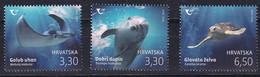 CROATIA 2021,FAUNA,MARINE LIFE,PROTECTED ANIMALS,TURTLE,COMMON,,MNH - Kroatien