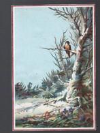 Calendrier  1881  Illustré Non Publicitaire  (PPP28212) - Formato Piccolo : ...-1900