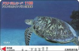 Japan Card Schildkröte  Tortue Turtle żółw - Tartarughe