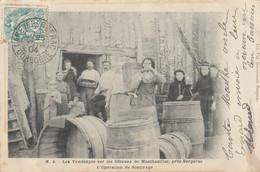 Les Vendanges Sur Les Côteaux De Montbazillac, Prés Bergerac - L'opération De Soutirage - 1904 - Otros Municipios