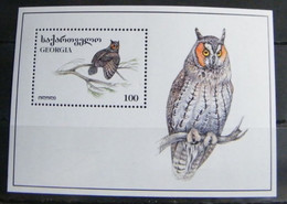 MZ67 -  GEORGIA 1996 FOGLIETTO SHEET - FLORA FAUNA  - UCCELLI - BIRDS - Georgia