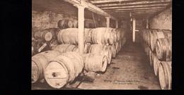 1286-BINCHE-maison ALBERT LEROY-une Grande Cave- Tonneau Chai Vin œnologie- Edit DESAIX - Binche