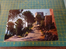 61200/16  Cartolina Di Campobasso  Usata Per Concorso - Campobasso