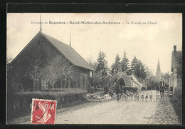 CPA Saint-Michel-des-Andaines, La Rentrée Au Chenil - Unclassified