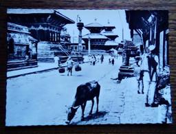 Népal-Carte Postale - Kathmandou - Un Aspect Du Quartier Des Temples - Nepal