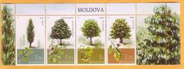 """2018 Moldova Moldova """"Main Types Of Trees In Moldova"""": Oak, Chestnut, Poplar, Maple Mint - Moldawien (Moldau)"""