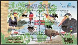 2009 Indonesia JIPEX Overprint On Birds Of The Rainforests Of Sumatra Minisheet (** / MNH / UMM) - Sperlingsvögel & Singvögel