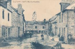 35 - BAULON : La Rue La Feuillée - Très Rare édition LEMARIE - Sonstige Gemeinden