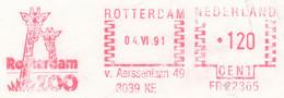 Freistempel Kleiner Ausschnitt 634 Giraffen Zoo Rotterdam - Affrancature Meccaniche Rosse (EMA)