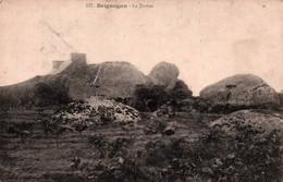 CPA - BRIGNOGAN - La Tortue ... - Brignogan-Plage