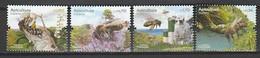 Portugal ** &  Beekeeping, Madeira 2013 (8716) - Honingbijen