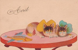 1 ER AVRIL   CHATS + POISSON - Cats