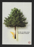 CPM.    Cart'Com.    Cart'Blanche.    Les Incendies De Forêt.    Postcard. - Advertising