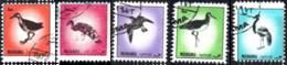 MANAMA, BAHREIN, FAUNA, UCCELLI, BIRDS, 1972, 3 Dh., FRANCOBOLLO USATO Mi: AJ MN 1210A-1214A - Bahrain (1965-...)