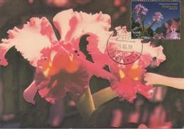 CARTE MAXIMUM - MAXICARD - MAXIMUM KARTE - MAXIMUM CARD - PORTUGAL (MADEIRA) - FLEURS  - ORCHIDS - Cathleya Hybr - Orquideas