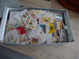 + 1.3kg De Timbres Dans Une Boite à Chaussure à Trier Fond De Collection - Collezioni (senza Album)
