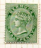 AMERIQUE DU NORD - BERMUDES - (Colonie Britannique) - 1884-93 - N° 17 - 1/2 P. Vert - (Victoria) - Bermuda